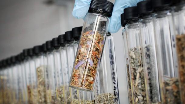 Polizei stellt große Drogenmenge in Nordhessen sicher