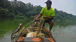 Fischer und Bauern schützen das Amazonas-Gebiet