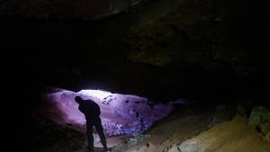 Forscher stirbt bei Tauchunfall in Höhle