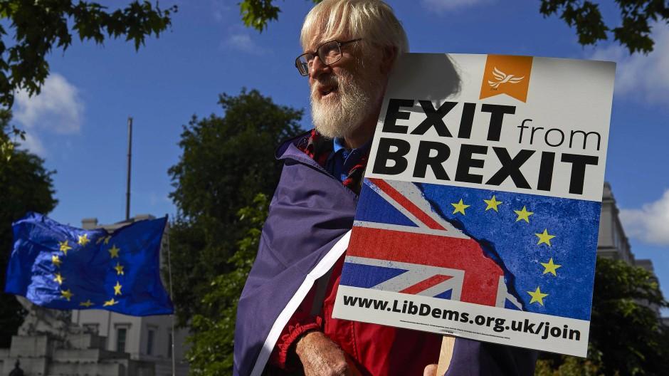 Nicht nur dieser Brite machte am Samstag in London sehr deutlich, was er vom Brexit hält: nichts.