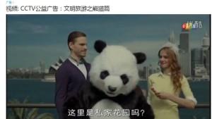 Chinas umstrittene Pinkel-Pandas