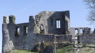 Überwuchert: Nicht alle Pflanzen sind für den Erhalt der Burgruine in Königstein schädlich.
