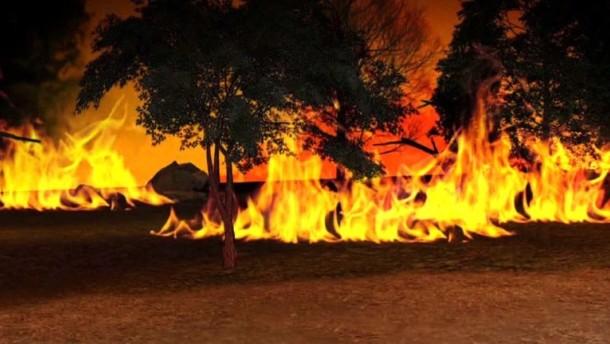 So entstehen Waldbrände