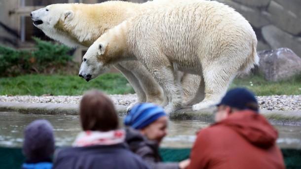 Städtetag: Auch Zoos, Museen und Theater brauchen Corona-Hilfe