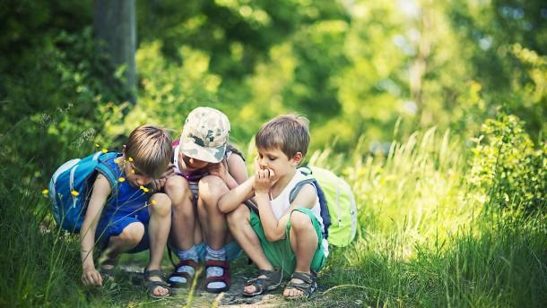 Was man draußen mit Kindern machen kann