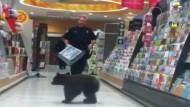 Kleiner Schwarzbär im Supermarkt