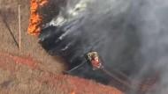 Buschbrände wüten in Amerika