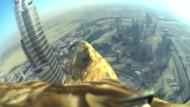 Adler filmt Dubai von oben