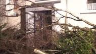 Sturmböen verursachen Schäden