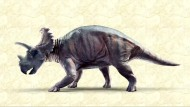 Neuer Dinosaurier in Kanada entdeckt
