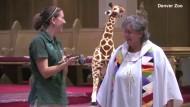 Tiere in der Kirche gesegnet
