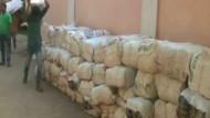 Cannabis im Wert von mehreren Millionen Euro beschlagnahmt