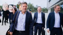 Grüne und FDP signalisieren Geschlossenheit