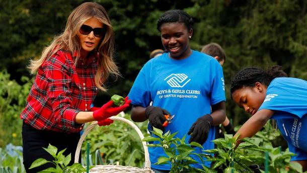 Melania Trump packt in Michelle Obamas Gemüsegarten an
