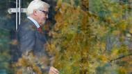 Frank-Walter Steinmeier: Gejagt von den Plagiatsjägern, im Gespräch als Finanzminister