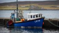 Shetland-Fischer hoffen auf den Brexit