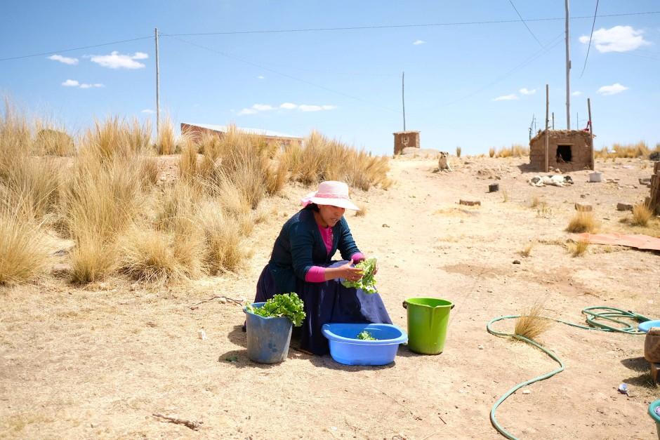 Eine andere aymarastämmige Journalistin, Sonia Quispe, wäscht Salat während eines Besuchs in ihrem Heimatort Vilaque, einem bäuerlich geprägten Dorf, nicht weit von El Alto.