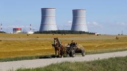 Streit um ein Atomkraftwerk in Belarus