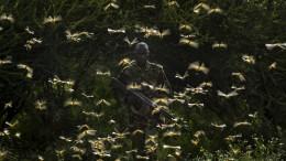 Ostafrika droht eine Hungersnot