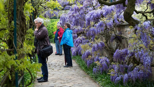 """""""Ein Garten ist kein Naturschutzgebiet"""""""
