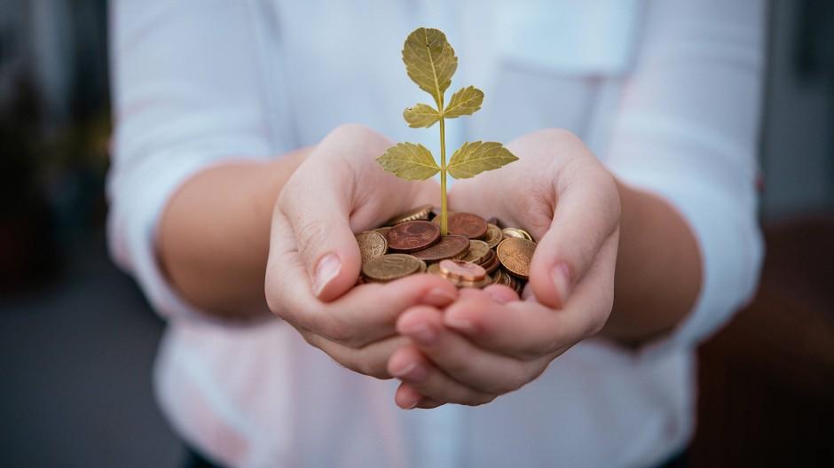 Kleinvieh macht auch Mist: Die frühen Jahre sind ideal, um Risiken in der Vermögensbildung einzugehen.