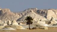 Die Oase Bahariya im Westen Ägyptens ist ein Anziehungspunkt für Touristen. Am Freitag starben hier mindestens 35 Polizisten im Gefecht mit Islamisten.