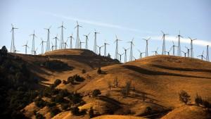 Wie Kapitalismus und Technik das Klima retten