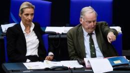 AfD laut Umfrage so stark wie die SPD