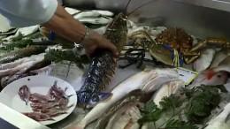 Die Spezialität der Insel Elba