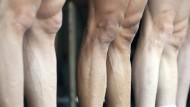Das Knie aus dem Reagenzglas