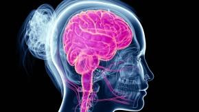 FAZ.NET Live: Hirnforschung: Musik heilt! Doch wo sind die Grenzen?