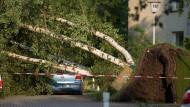 In Hamburg hat schweres Unwetter den Osten der Stadt getroffen und Bäume umgestürzt.