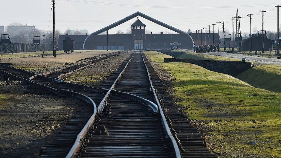 Kz Gedenkstätte Auschwitz Bittet Besucher Um Mehr Respekt