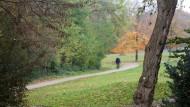 Der Eingangsbereich des Wissenschaftsparkes in Gelsenkirchen, in dessen Nähe eine 13 Jahre alte Schülerin von einem Unbekannten angegriffen wurde.