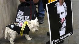Berufungsverfahren gegen Julian Assange beginnt in London