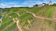 Fast 17 Hektar in steiler Lage gehören zum Weingut.
