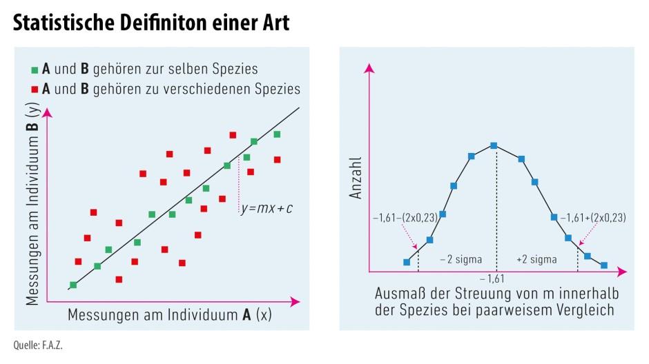 Beste Arten Von Elektrischen Diagrammen Zeitgenössisch - Die Besten ...