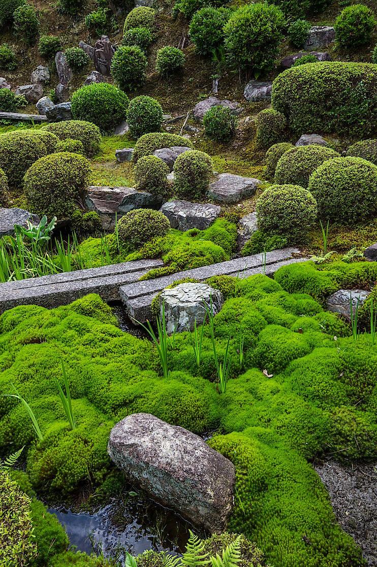 Die Gärten des Tofuku-ji-Tempels in Kyoto zeigen, wie man Moos effektvoll einsetzt.