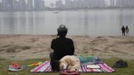 Erholung von den strikten Quarantäne-Maßnahmen: Am Ufer des Jangtse in Wuhan Mitte April dieses Jahres