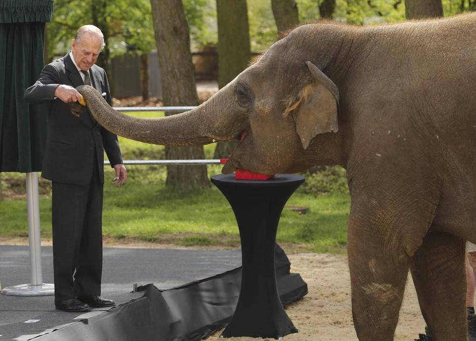 Elefanten-Fan: Gemeinsam mit seiner Frau eröffnete Prinz Philip 2017 ein neues Elefantenhaus im Whipsnade Zoo im englischen Bedfordshire.