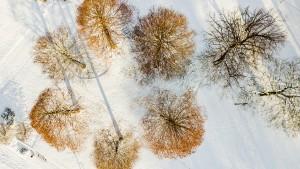 Kälterekorde fallen in vielen Teilen Deutschlands