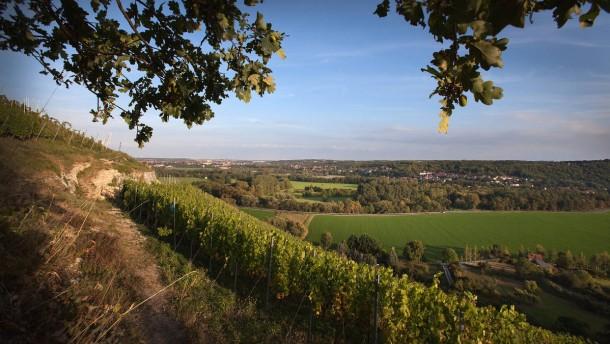 Breitengrad 51 - Die Winzergruppe mit acht Mitgliedern nutzt typische Rebsorten an alten und steilen Weinbergslagen der Saale bzw. Unstrut und trifft sich in Naumburg an der Saale