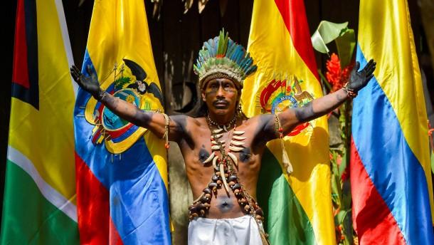 Amazonas-Länder wollen Regenwald künftig besser schützen