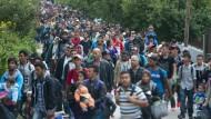 Österreich erhöht den Druck, Ungarn applaudiert