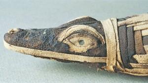 Der kuriose Krokodilkult im alten Ägypten