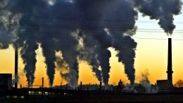 Jüngere nehmen weniger Rücksicht aufs Klima