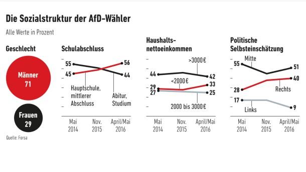 Infografik / Die Sozialstruktur der AFD-Wähler