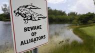 Hinweisschilder warnen vor der potentiellen Gefahr durch Alligatoren an Seen und Teichen in Florida.