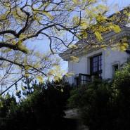 Villa am North Carolwood Drive. Michael Jackson zahlte monatlich 100.000 Dollar Miete für das Haus, in dem er an einer Überdosis diverser Medikamente sterben sollte.