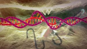 Hände weg von unseren Genen!